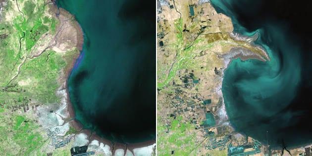 10 фотографий показывающие масштабы экологической трагедии