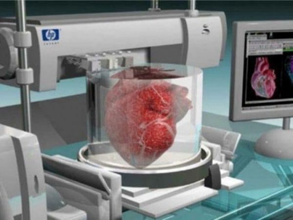 Через шесть лет появятся человеческие органы, напечатанные на 3D-принтере