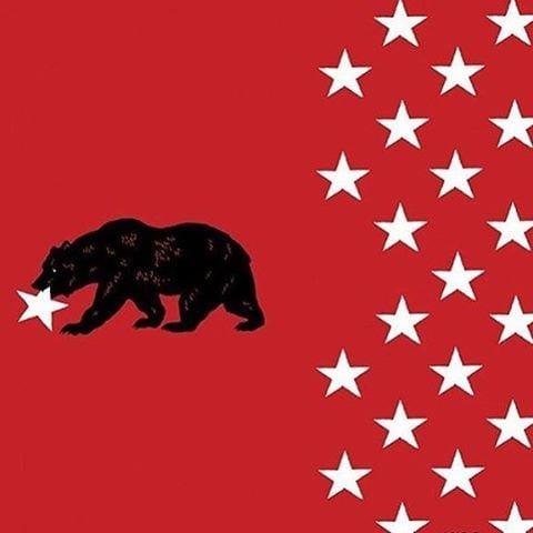 Реакция социальных сетей на предполагаемое отделение Калифорнии от Америки
