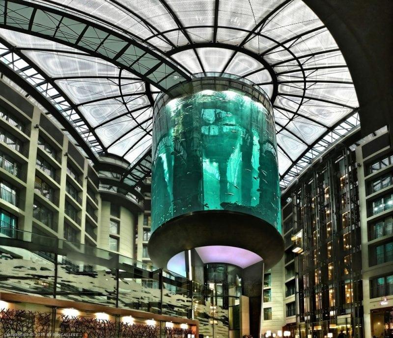Самый большой в мире аквариум. Зрелище просто невероятное!