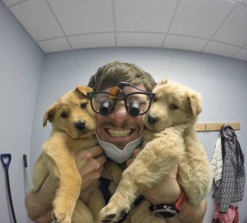 Стоматолог из Аляски и его мимимишные собаки покорили интернет