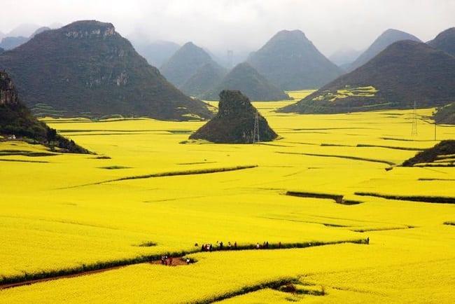 Удивительные фотографии из разных уголков планеты