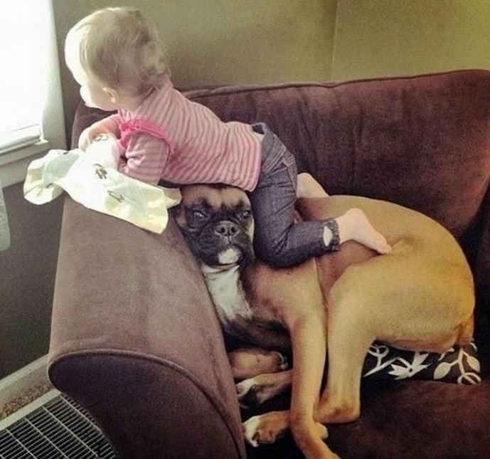 Дружба домашних животных и детей. У кого такие же милашки?
