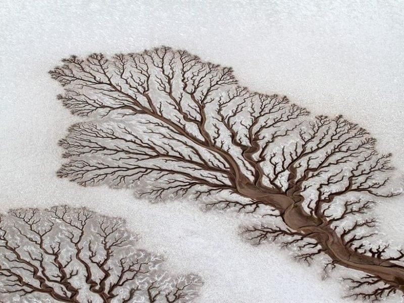 Иллюзия обмана от природы. Никакого фотошопа!