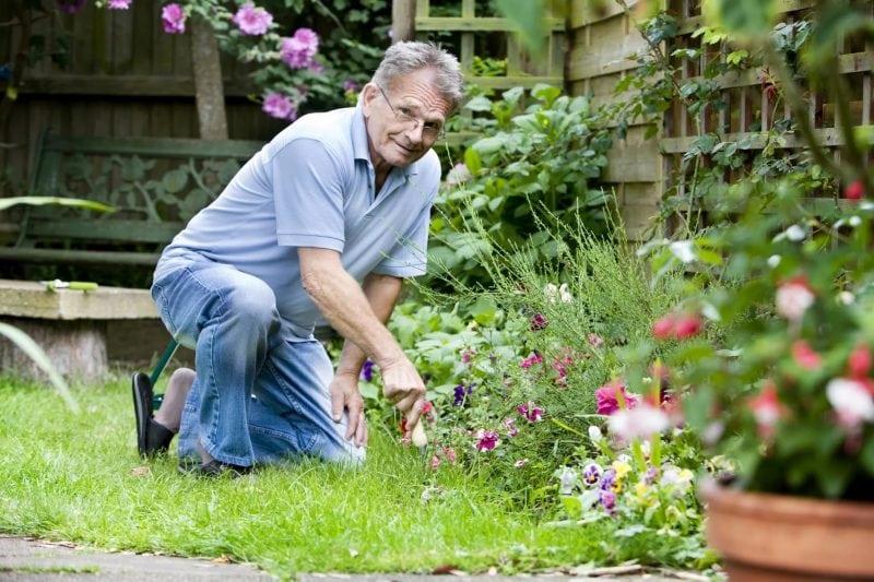 Календарь посадки рассады в 2017 году. Полезная информация для садоводов!