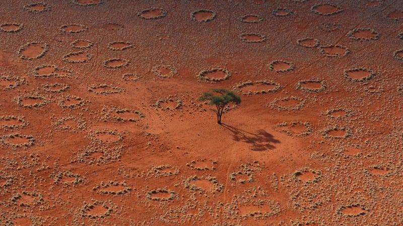 Красота вокруг нас! Природа снова удивляет! 31 завораживающее фото