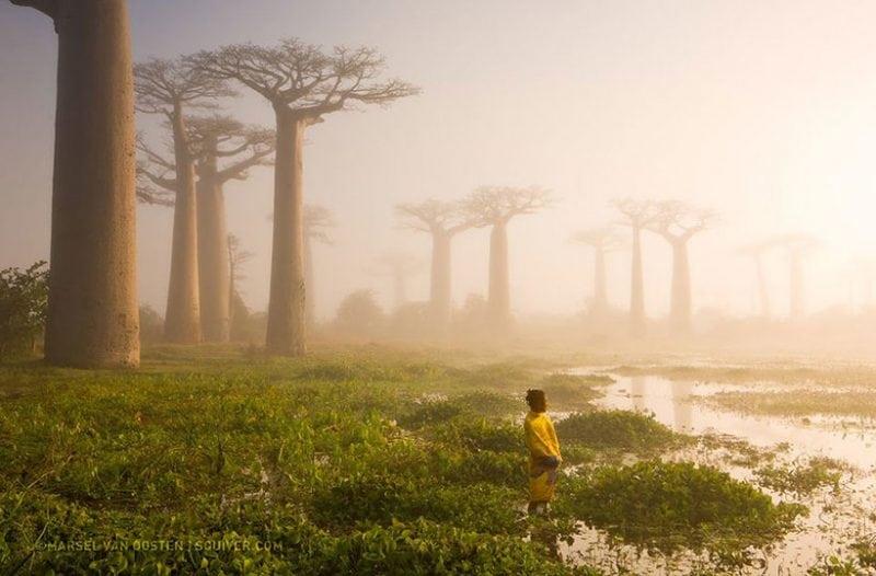 Очередная порция прекрасных снимков по версии National Geographic! Приятного просмотра!