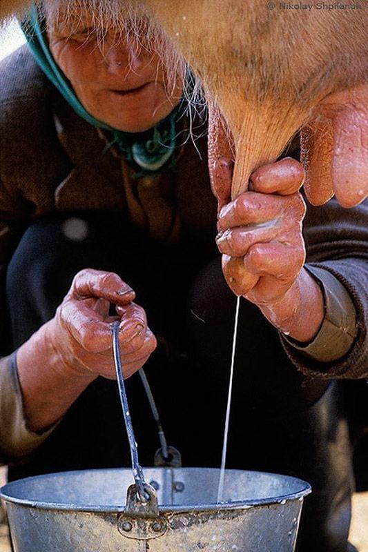 Уют и быт настоящей русской деревни глазами фотографа. Какая все таки красота!