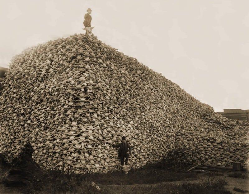 15 исторических фотографий трогающих до глубины души...