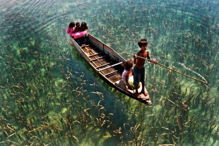 20 прекрасных фотографий без применения фильтров