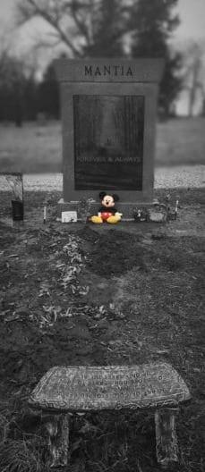 Эта молодая девушка сделала последнюю фотографию, а потом её жизнь разрушилась...