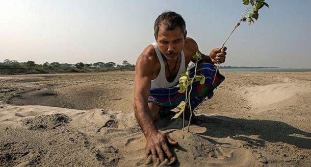 Мужчина посадил бамбук в пустыне, а спустя 35 лет произошло чудо...