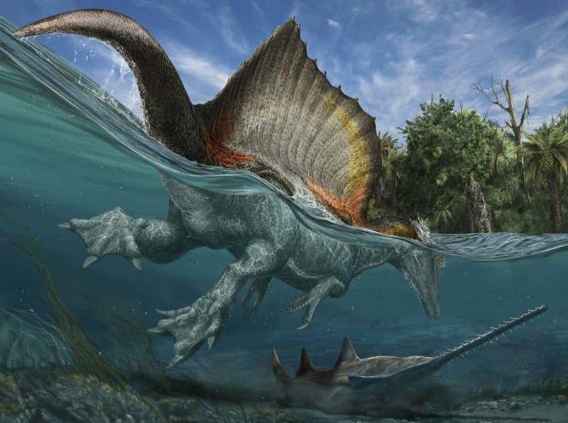 Топ-15 самых огромных животных, которые когда то обитали на Земле