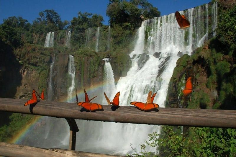 Великолепные водопады Игуасу в Бразилии