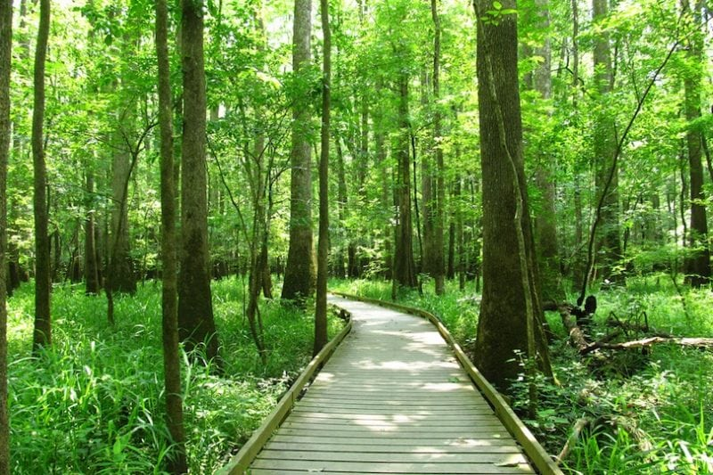 10 восхитительных мест в Южной Каролине