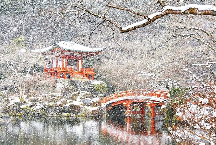 Зимняя сказка в Киото после снегопада