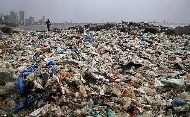 волонтеры очистили пляж