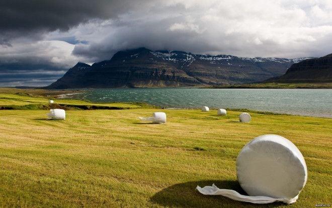 8 интереснейших фактов об Исландии, о которых мало кто слышал