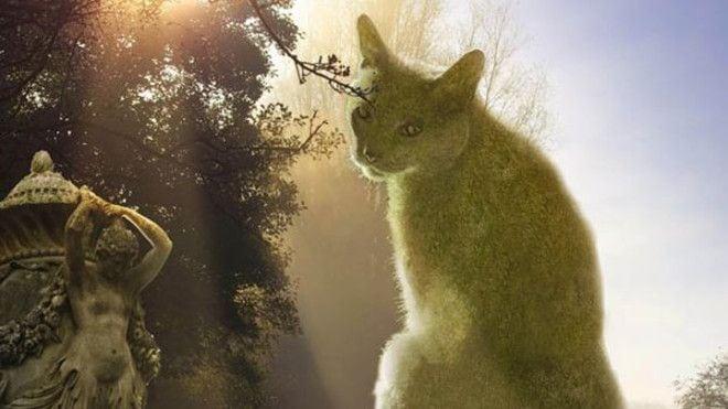 Необычные кусты в форме котов, которые покорили Интернет