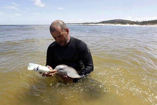 Отдыхающие до смерти замучили дельфиненка пока делали с ним фотографии