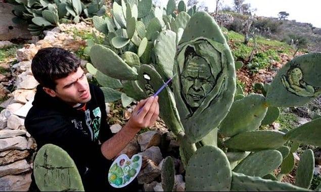 мужчина рисует на кактусах
