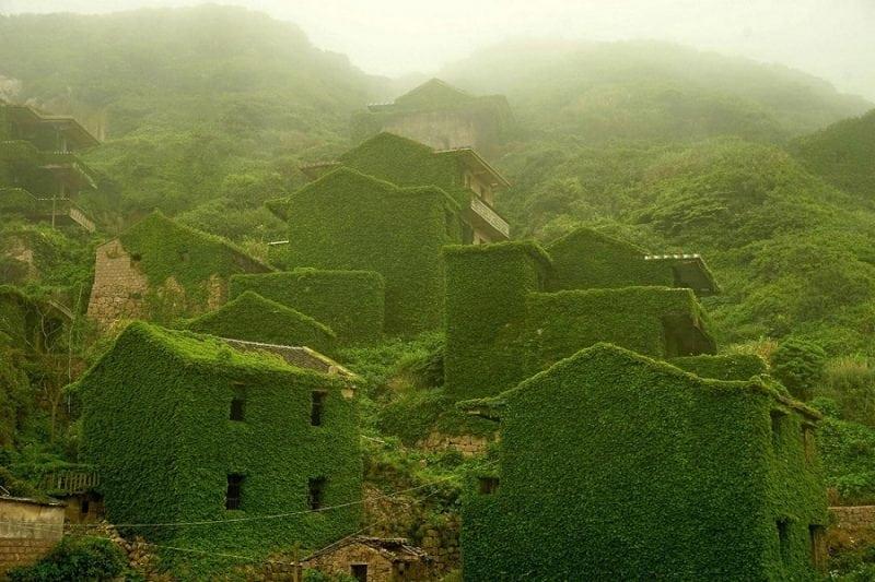 зеленая деревня в Китае