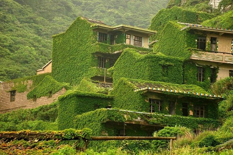 """""""Зеленая"""" деревня рыбаков в Китае — гармония человека с природой"""