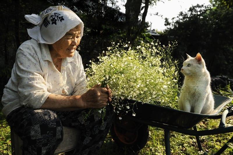 Дружба длиною в 13 лет: бабушка и кошка поддерживают друг друга во всем