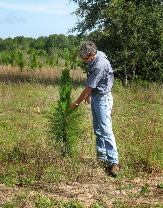 Этот мужчина потратил 90 МИЛЛИОНОВ долларов, чтобы сохранить уникальную природу Флориды