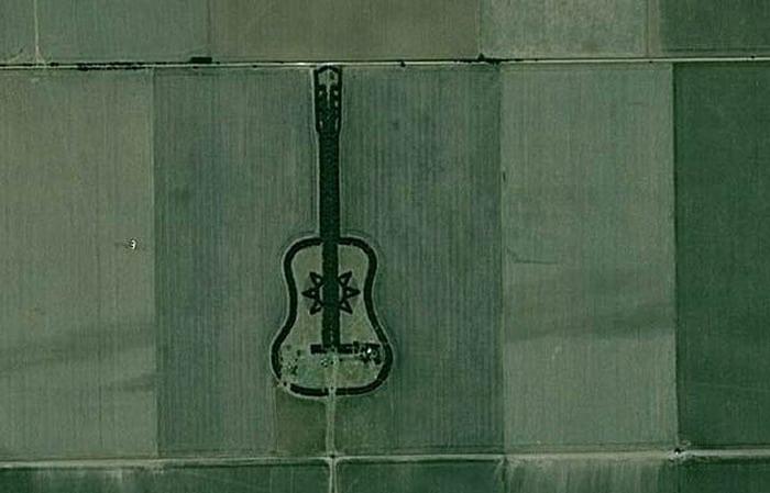Гитара в лесу: Лесной массив очень необычной формы