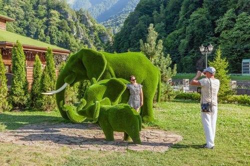 """Кусты в форме животных в парке """"Зелёная планета"""" в городе Сочи"""