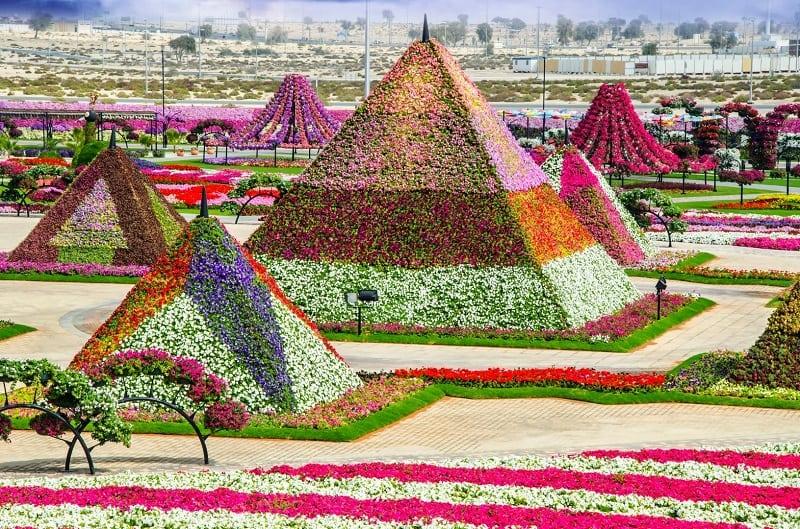Удивительный парк цветов в Дубае