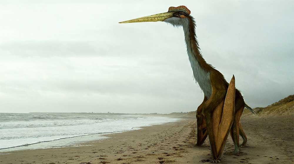 Какой самый большой динозавр существовал в мире: фото и описание